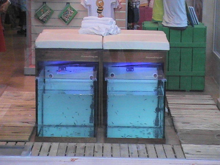 Spa Arica Madera